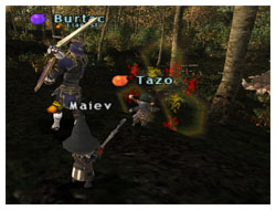 Expin with Tazo on Maiev's Taru Samurai, FFXI Fenrir
