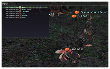 Chaining 160+, Lv72, FFXI Maiev of Fenrir, DuckHUNT with Sibe and Soulcalibur