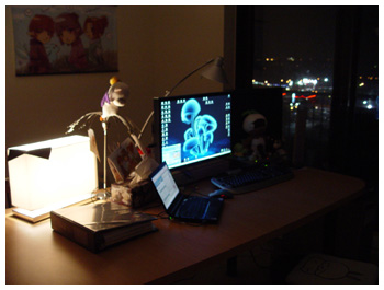 the StarOnion Brigade, Maiev, Room, FFXI, Desktop