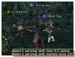Maiev's parrying skillup strategies and guide, Taru Samurai, FFXI of Fenrir