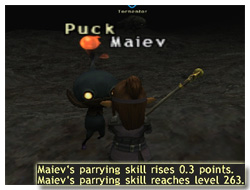 Parrying Skillup in FFXI, Maiev's Taru Samurai of Fenrir
