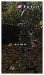 Palidor Kupo, Maiev FFXI, Taru of Fenrir Server