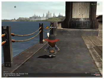 Draw Distance, Ship to Whitegate, Improve FFXI Graphics, 3rd Party Windower Plugin