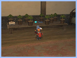 Tazo Taru and her plants in FFXI