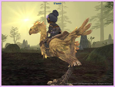 Tazo on Chocobo and Sunset, FFXI Taru Fenrir